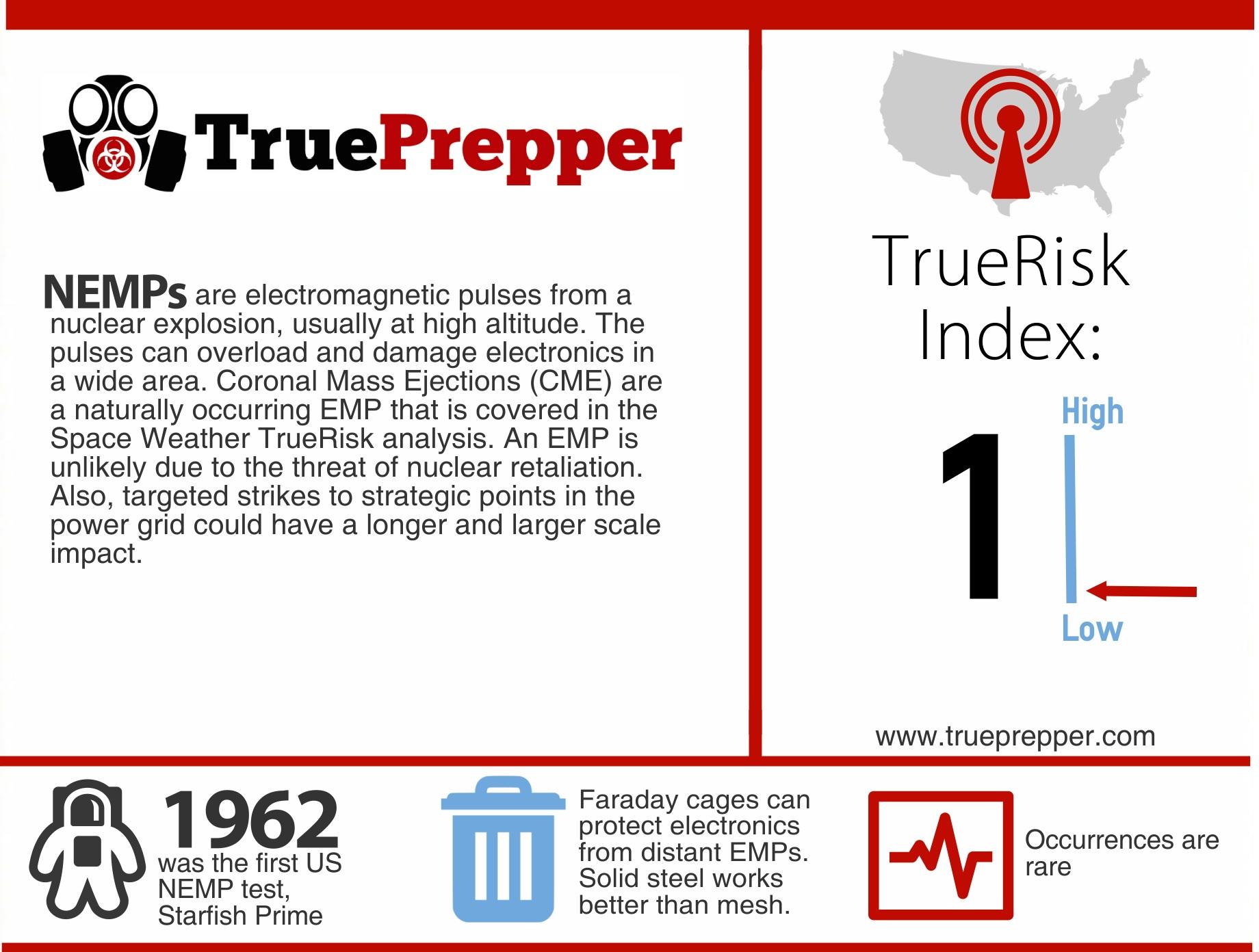 TrueRisk Electromagnetic Pulse