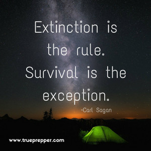 Extinction is the rule. Survival is the exception.