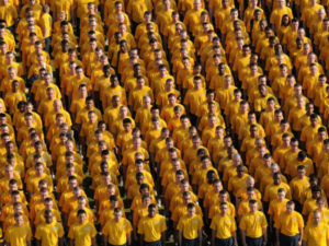 Organized Crowd
