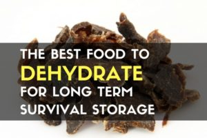 The Best Food to Dehydrate for Long Term Survival Storage