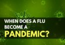 When Does a Flu Becomes a Pandemic_