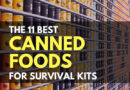 The 11 Best Canned Foods for Survival Kits