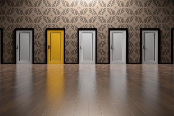 Door choices