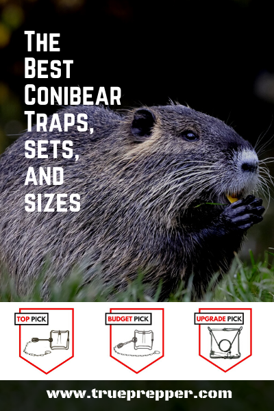 The Best Conibear Traps, Sets, and Sizes
