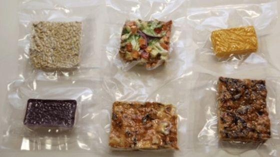 Astronaut Freeze Dried Food